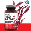 Evercare Red Algae 300 mg 60 κάψουλες