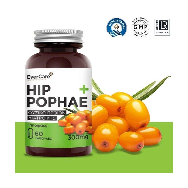 HIPPOPHAE